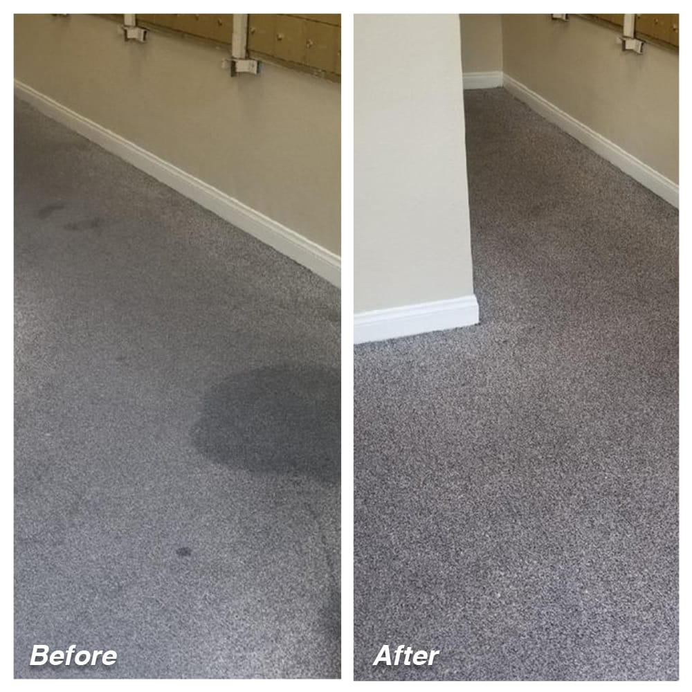 Dial Carpet Cleaning - Before and After - Carpet Renewal