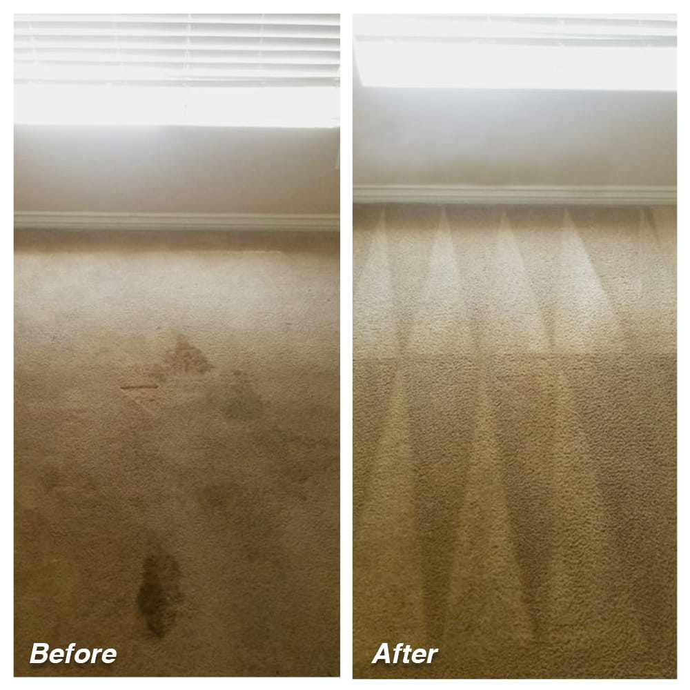 Dial Carpet Cleaning - Before and After - Deep Cleaning
