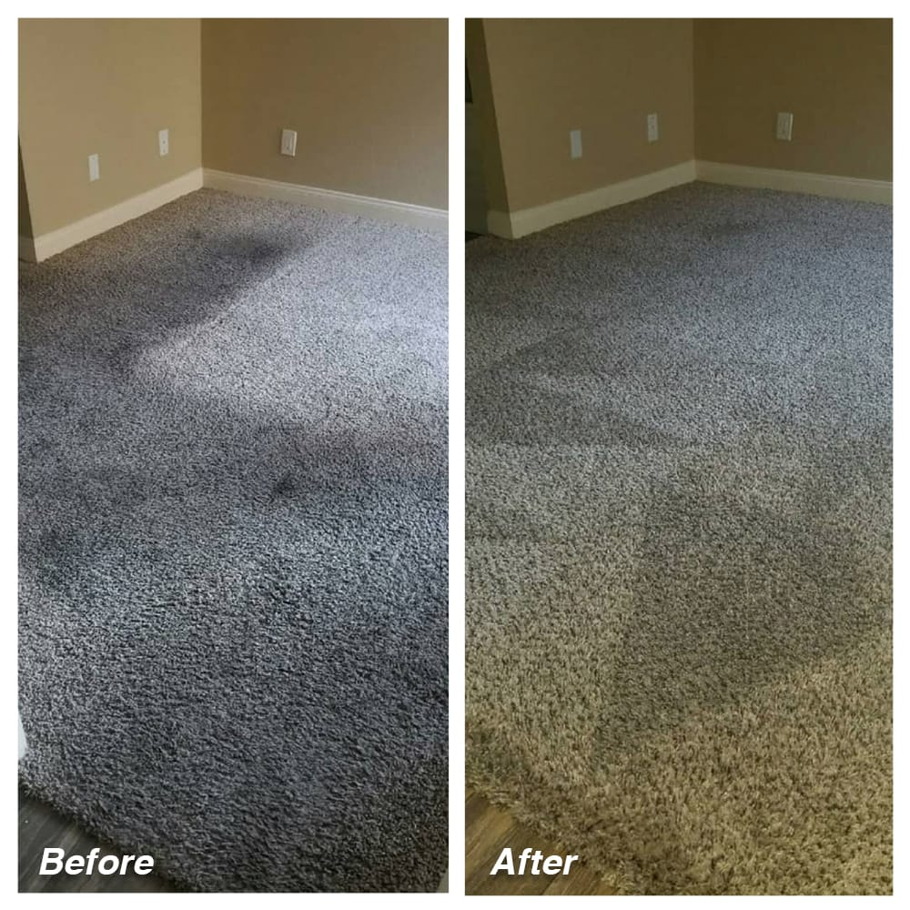 Dial Carpet Cleaning - Before and After -Residential Carpet