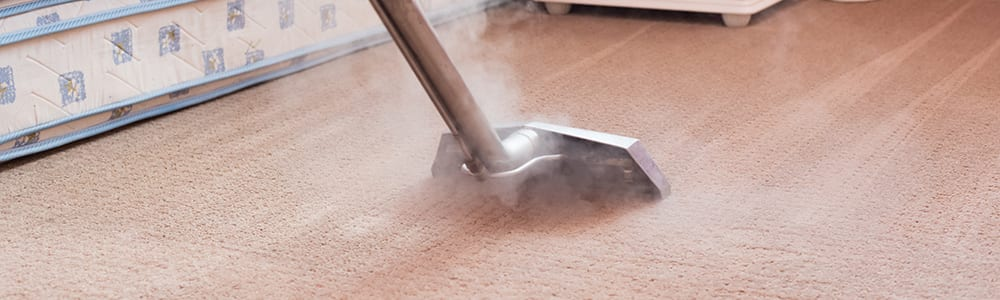 Dial Carpet Cleaning - Residential Carpet Cleaners