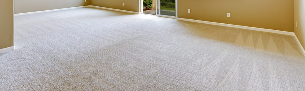 Dial Carpet Cleaning - Residential Carpet Cleaning