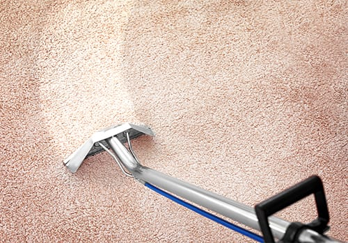 Dial Carpet Cleaning - Residential Carpet Steam Cleaner